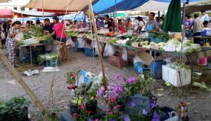 השוק הכפרי של יום ראשון