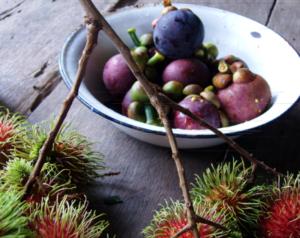 מנגוסטין (מנגקוט, בסגול) ורמבוטן (נגו)